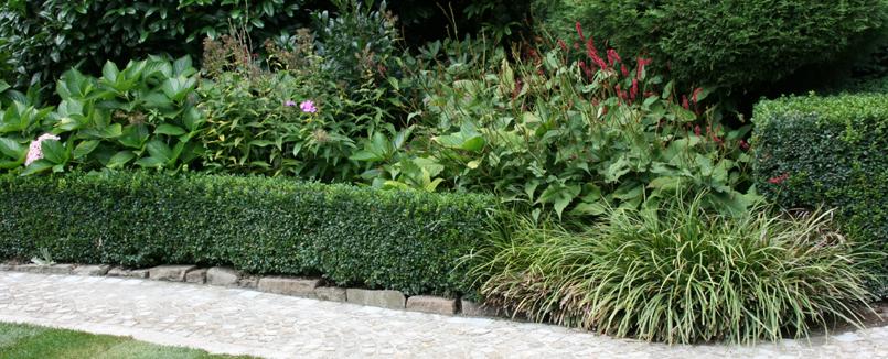 pflanzung begr nung pflanzen in der gestaltung von landschaft und garten. Black Bedroom Furniture Sets. Home Design Ideas